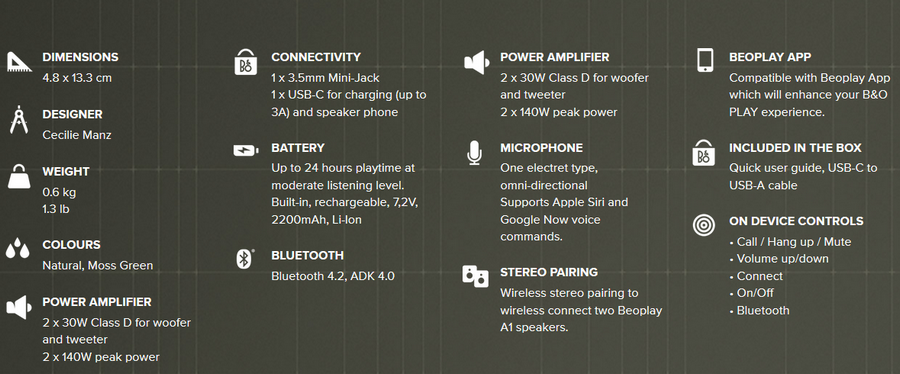 Beoplay P2 18
