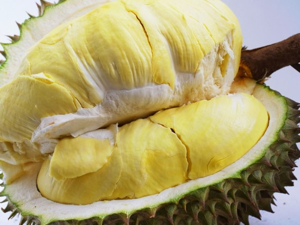 30109515 - durian is known as the king of fruit and popular in southeast asia